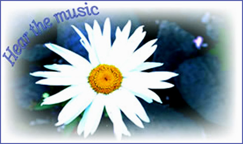 Hear the music-see the music-be the music daisy design